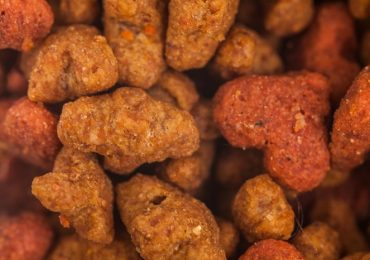 How Many Calories In Dog Food?