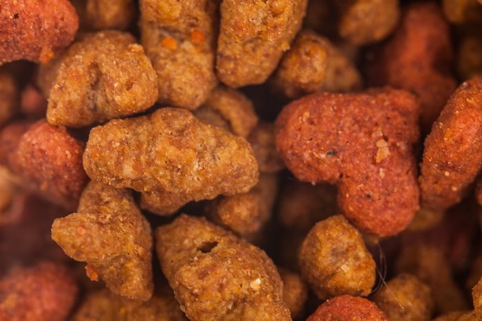 Extreme Macro Closeup of Dry Cat food details